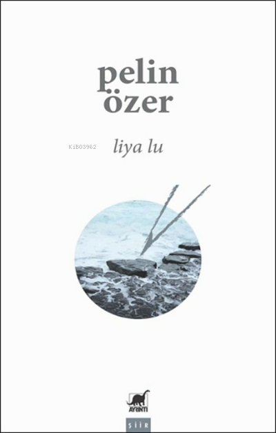 Liya Lu