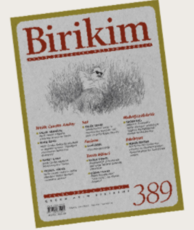 BİRİKİM sayı 389 / EYLÜL