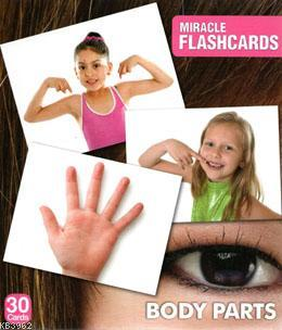 Miracle Flashcards Body Parts